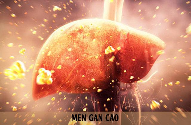 Men gan cao: triệu chứng, nguyên nhân và cách điều trị